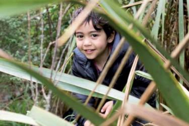 Tamariki in the forest.