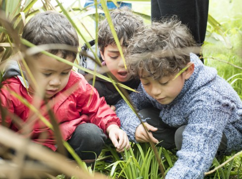 Children exploring the natural environment.