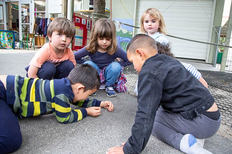 A group of tamariki talking together while looking at a spider on the path.