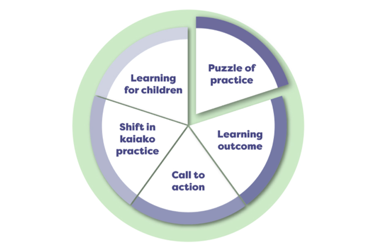 Diagram of five step process used in the webinars. Steps are puzzle of practice, learning outcome, call to action, shift in practice, and learning for children
