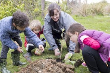 Children planting a shrub.